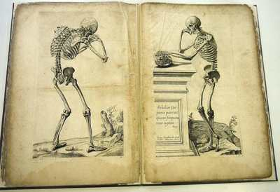 Abstract Anatomy, accommodated to the arts of painting and sculpture (Paris 1668)